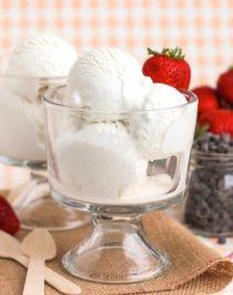 Healthy Vanilla Bean Greek Frozen Yogurt recipe - Healthy Dessert Recipes at Desserts with Benefits