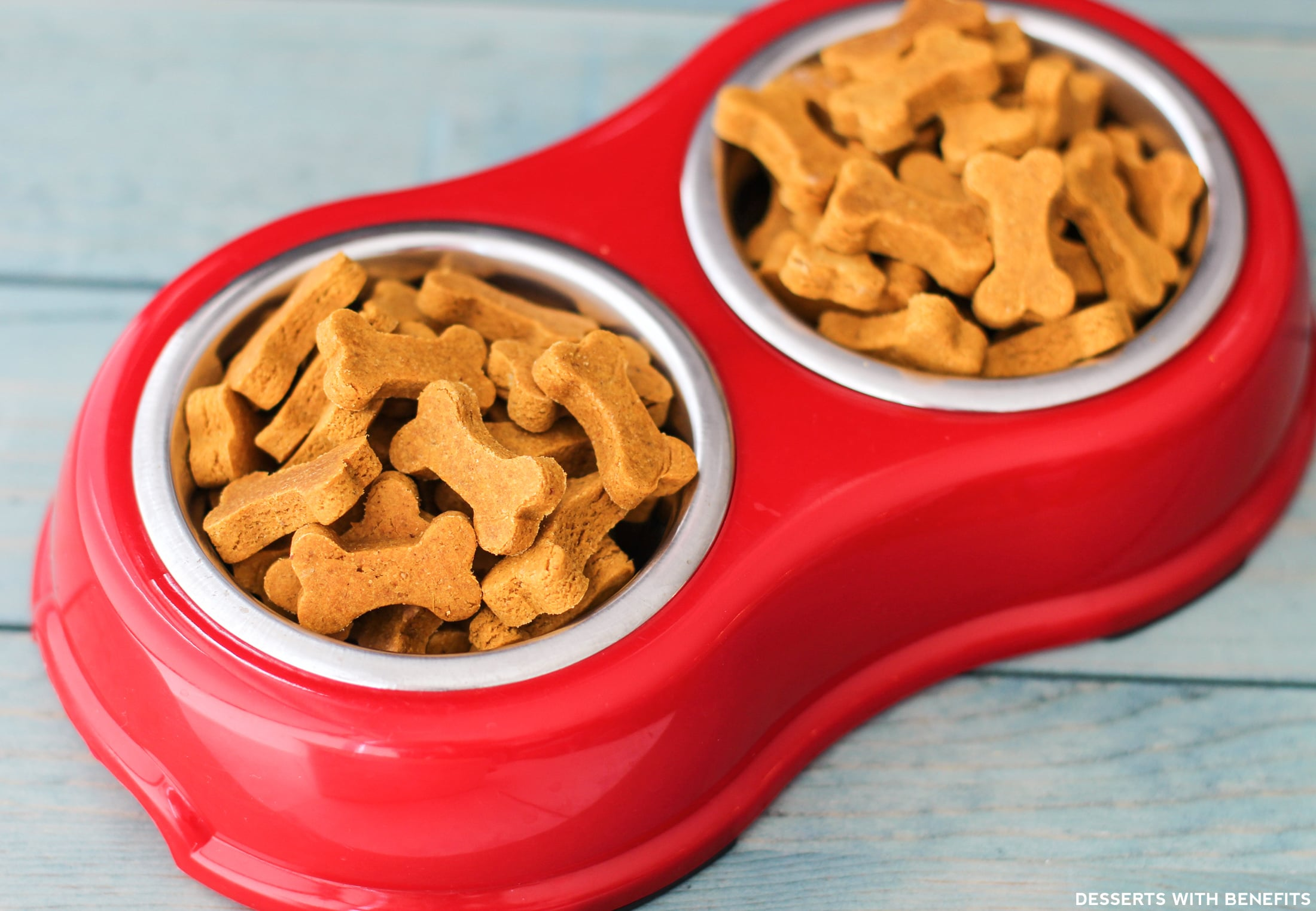 Healthy Homemade Peanut Butter Pumpkin Dog Treats (sugar free, gluten free, dairy free, eggless, vegan) - Healthy Dessert Recipes at Desserts with Benefits