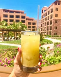 Margarita #1! Looking for the BEST vacation destination to treat yourself? From a quiet getaway to soak up the sun or to enjoy your honeymoon, the Villa del Palmar at the Islands of Loreto, Mexico is one of those hidden gems you need to visit for yourself. This unique, affordable vacation destination is packed with fun activities such as golfing, kayaking, paddle boarding, snorkeling, whale watching, and fishing. Whatever you're looking for in your upcoming getaway, Villa del Palmar offers it!