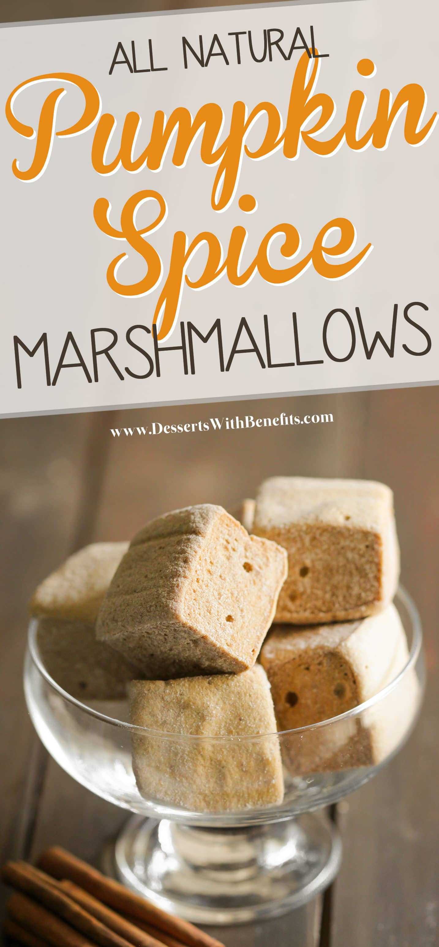 These Healthy Homemade Pumpkin Spice Marshmallows are the fluffiest, most flavorful, and FUN mallows I've ever made! Delicious and packed with spices, such as cinnamon, ginger, and nutmeg. You'll never believe these are refined sugar free, fat free, gluten free, and all natural! Healthy Dessert Recipes at the Desserts With Benefits Blog (www.DessertsWithBenefits.com)